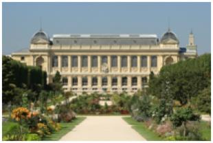 Marché immobilier à Paris en 2014 : le 5e arrondissement